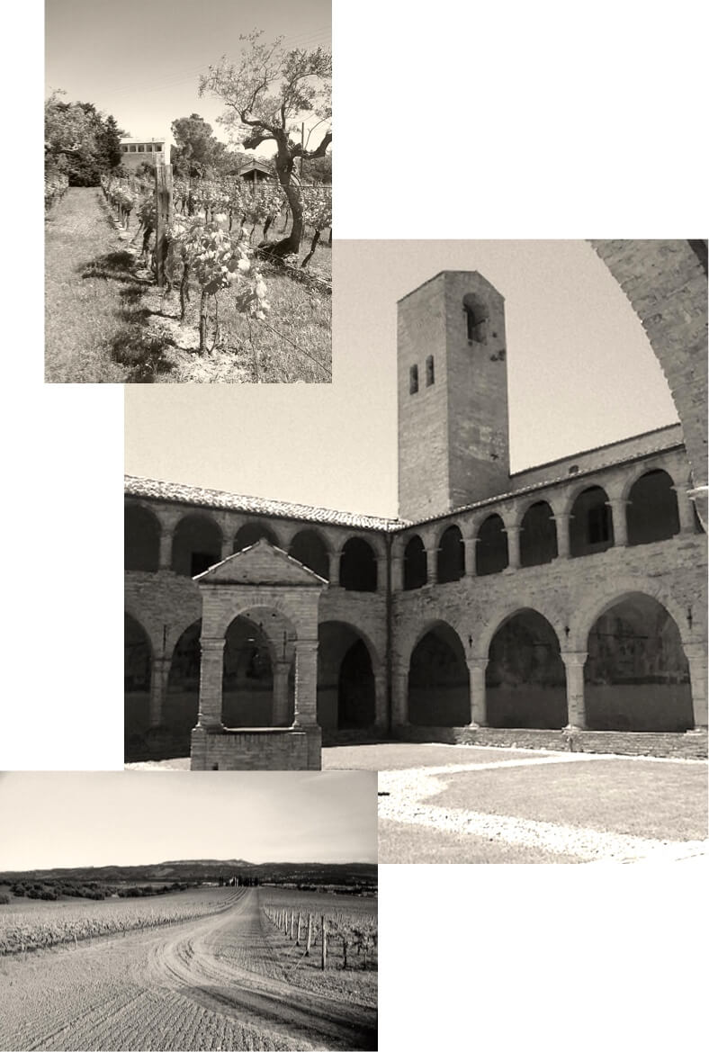 abbey-collage
